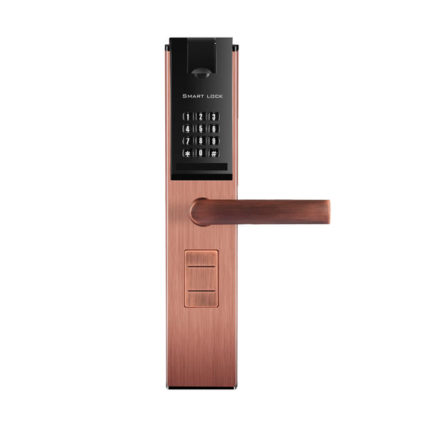 Marvellous Digital Door Handle Contemporary Exterior